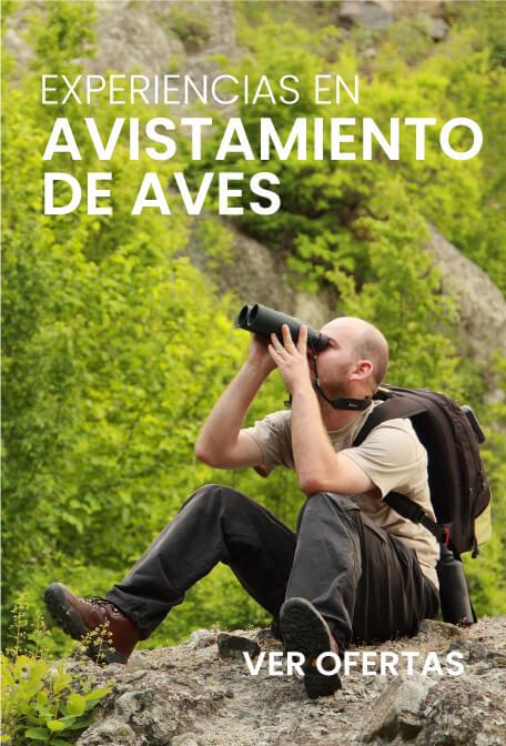 Promociones colombiantraveladvisors.com